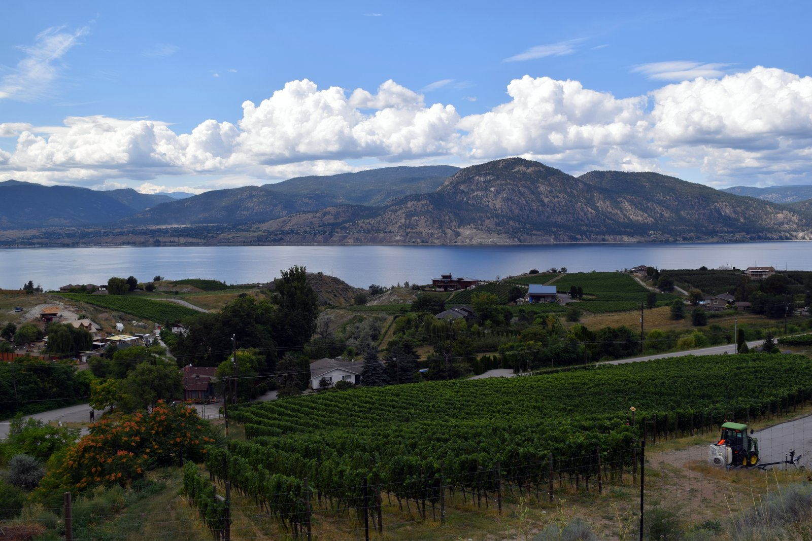 Insider Tips For Your Okanagan Beer Fest Getaway, Part I