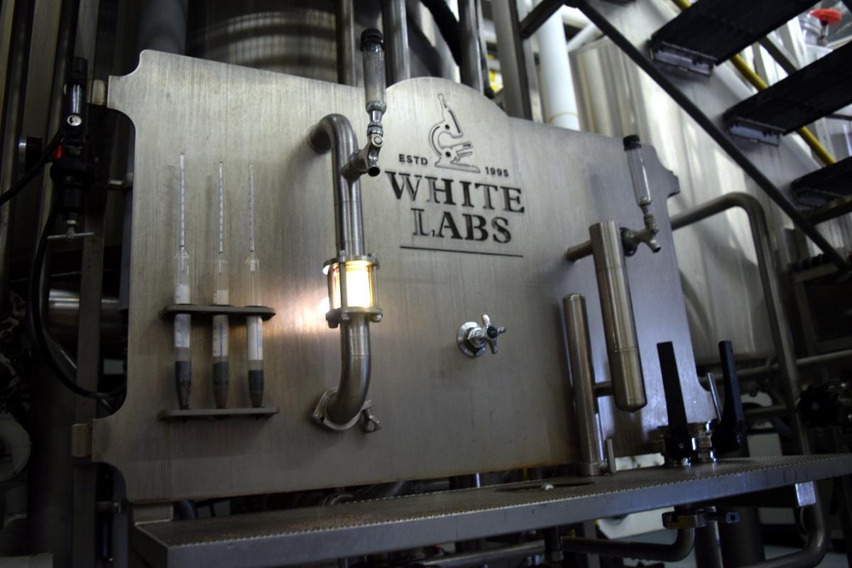 Beer Seekers: San Diego, Part I