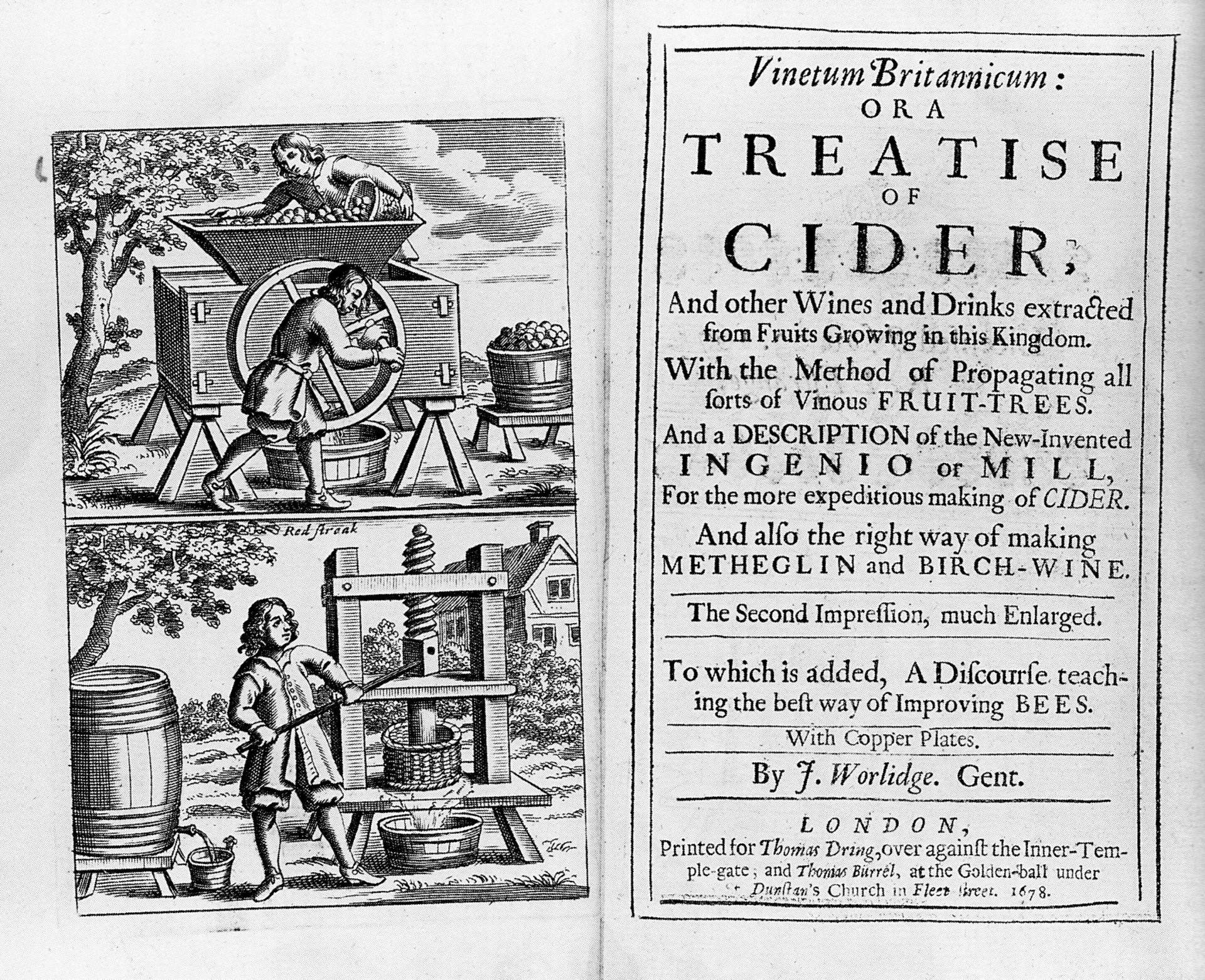 A Brief, Opinionated, History Of Cider